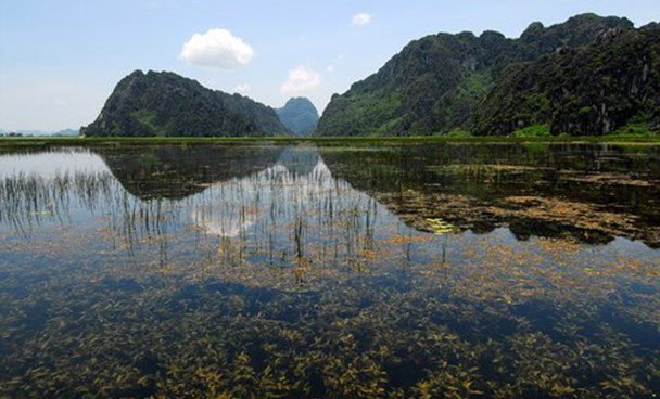 Water has been hold up inside the Van Long Lagoon in the northern province of Ninh Binh for the new King Kong film. Photo credit: VnExpress