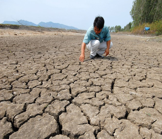 Vietnam's central and southern regions will continue suffering from severe drought and saltwater intrusion through April, experts said in a forum in Hanoi on march 28, 2016. Photo: Le Hoang Vu