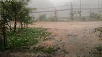 Hailstones damage 1,000 houses in northern Vietnam