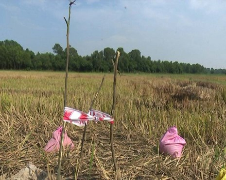 The site where a cluster bomb exploded and killed a bomb clearance expert in Quang Tri Province May 18. Photo: Nguyen Phuc/Thanh Nien