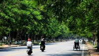 Hue is Vietnam's first city to win WWF green title