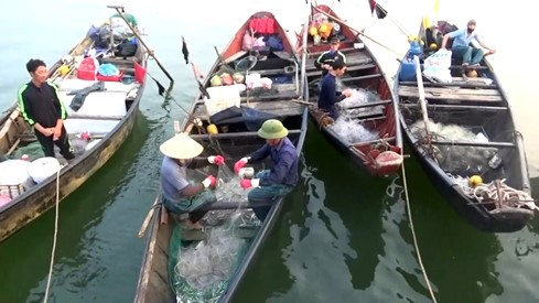 Fishermen in Ha Tinh Province now struggle to make a living. Photo: Tri Minh