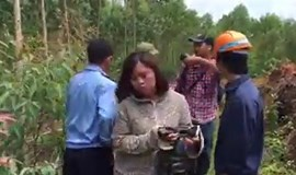 Vietnamese journalists attacked while investigating Formosa waste scandal