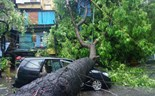 1 killed, tourists stranded as typhoon batters northern Vietnam