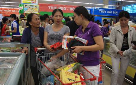 Higher budget deficit ceiling won't help Vietnam's GDP growth: expert