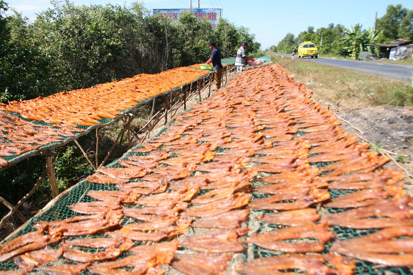 the magical mekong delta where the roads are paved with drying fish