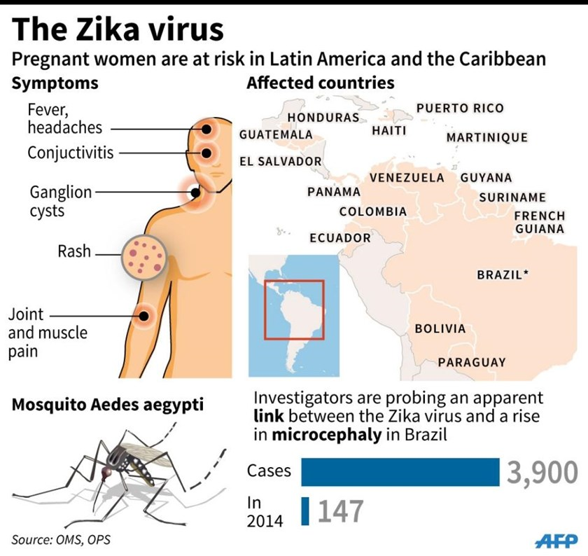 Zika Virus Symptoms Facts And Affected Countries