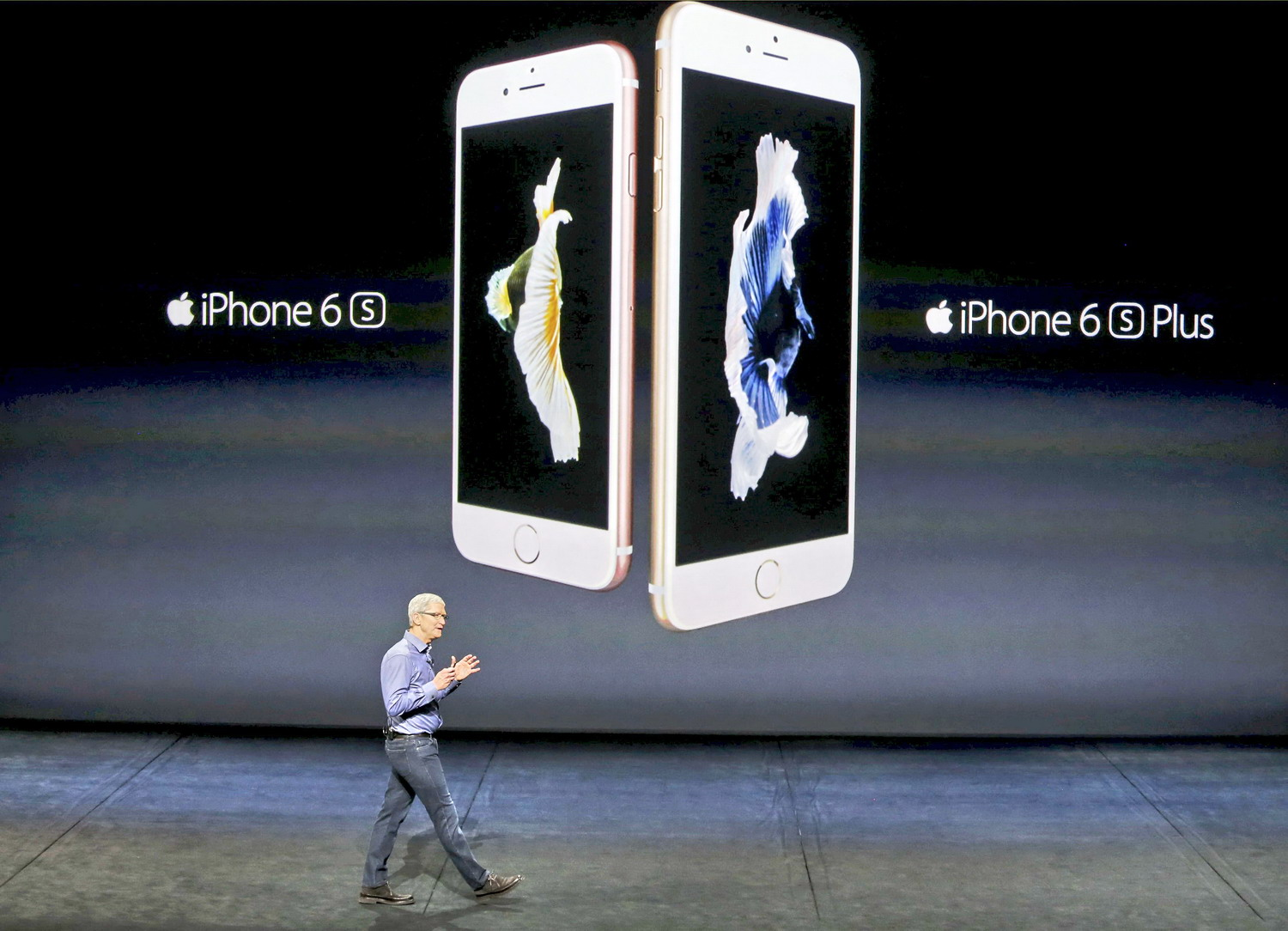 Apple phone, tablet and TV fail to impress investors