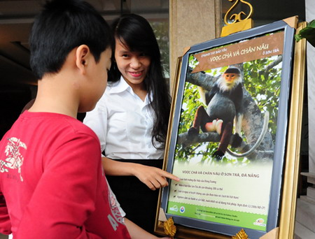 Vietnam city puts up posters to protect langurs Society