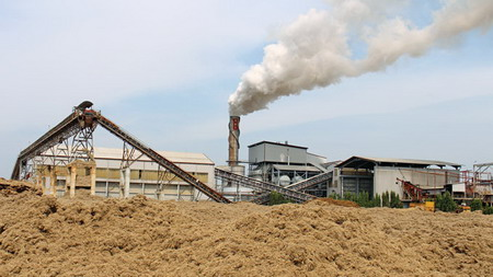 Energy official says Vietnam squandering biomass
