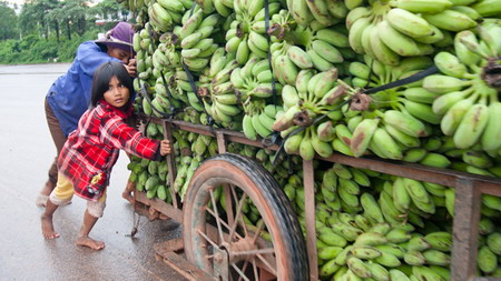 Vietnam's poverty aid plagued by inefficiency, fraud: lawmakers