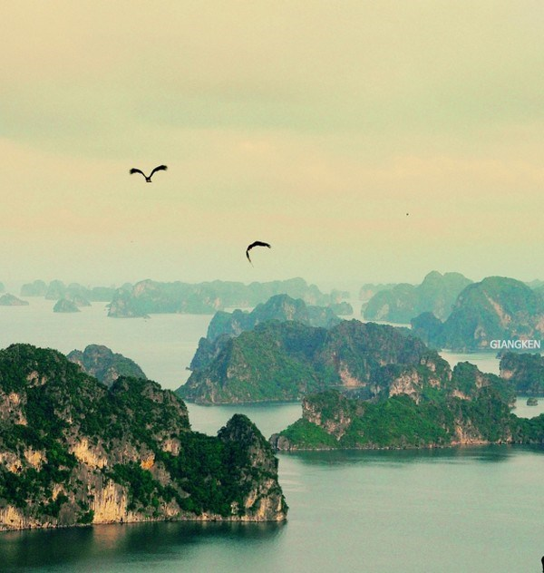 Vietnam's rice terraces, Ha Long Bay among most beautiful places on earth