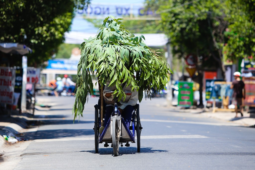 Vietnamese get creative to beat summer heat